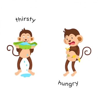 Opposite thirsty and hungry illustration