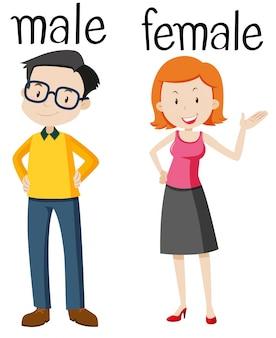 男性と女性のための反対のワードカード
