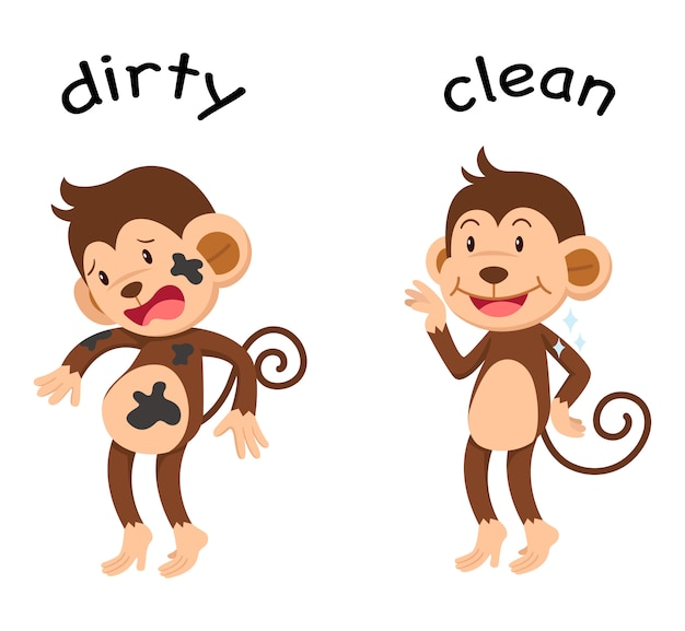 Opposite words dirty and clean