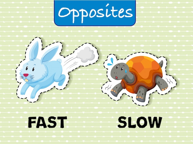 Opposite words for fast and slow