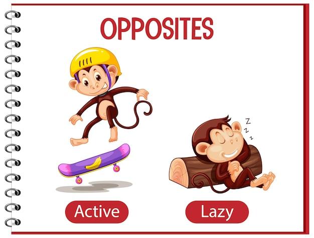 Противоположные слова с активным и ленивым