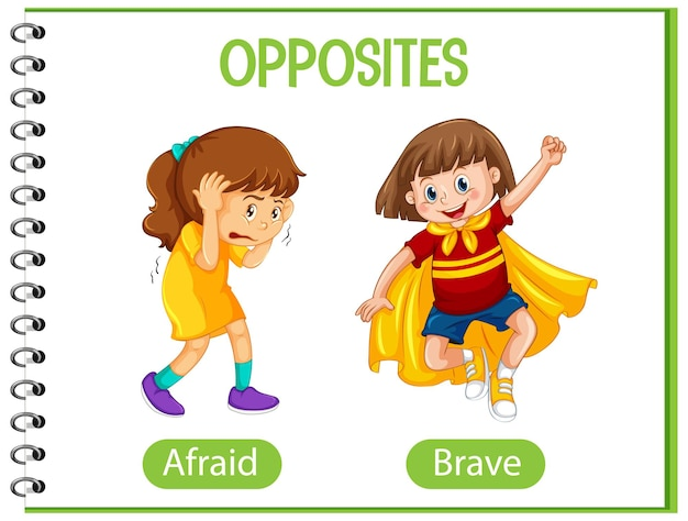Opposite words with afraid and brave