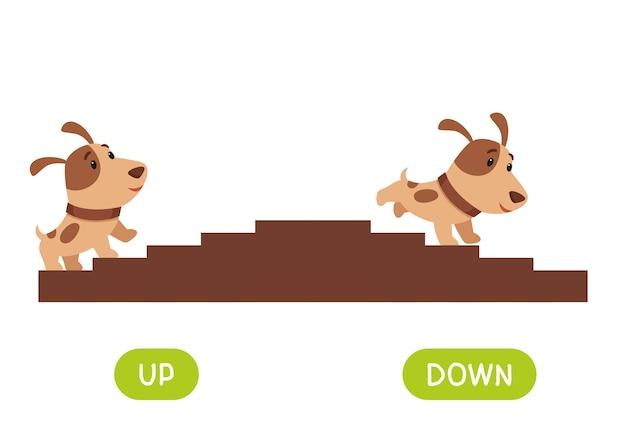 반대 개념, 위아래. 언어 학습을위한 단어 카드. 귀여운 강아지가 계단을 오르고 내려갑니다. 어린이를위한 반의어가있는 플래시 카드 템플릿.