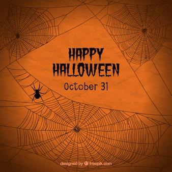 Оранжевый фон с паука и паутины