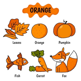 Orange color with vocabulary set in english
