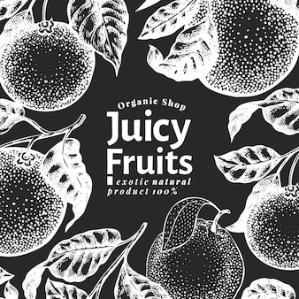 Orange fruit design template. hand drawn vector fruit illustration on chalk board. engraved style banner. retro citrus background.