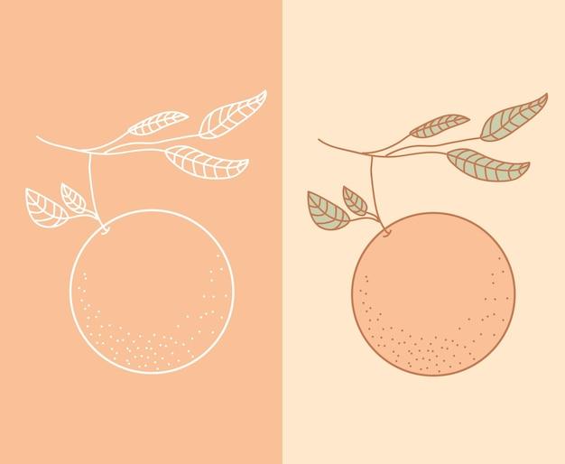 그린 트리 손에 오렌지 과일입니다.