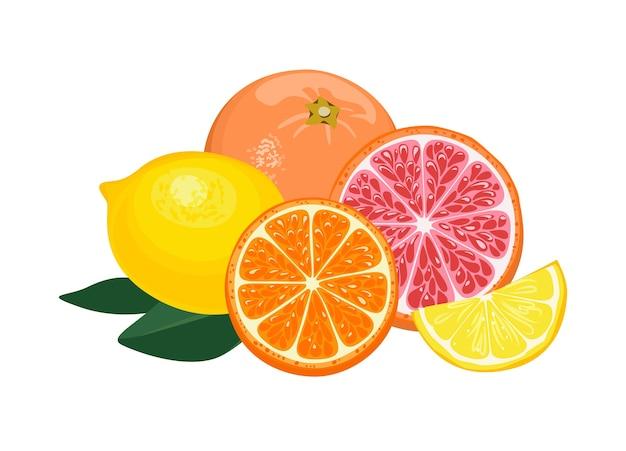Апельсин фрукты лимон грейпфрут изолированные