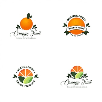 Orange fruit logo set vector