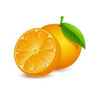 오렌지 과일 벡터 만화 그림 신선한 전체 및 절반 슬라이스