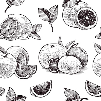 Orange fruits seamless pattern. vintage citrus fruit, hand drawn oranges with flowers and leaves sketch, botanic drawing lime and grapefruit plant engraving vector wallpaper