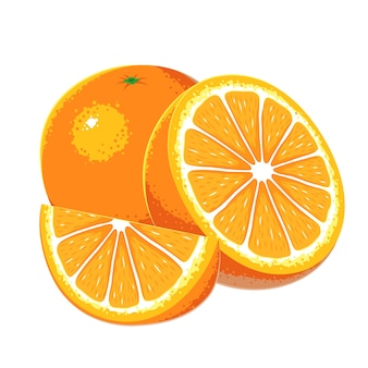 Mandarin Orange Vector Vectors, Photos and PSD files | Free