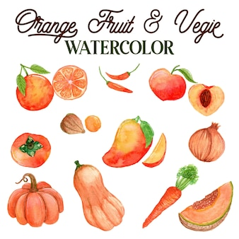 Orange fruits and vegetables watercolor illustration