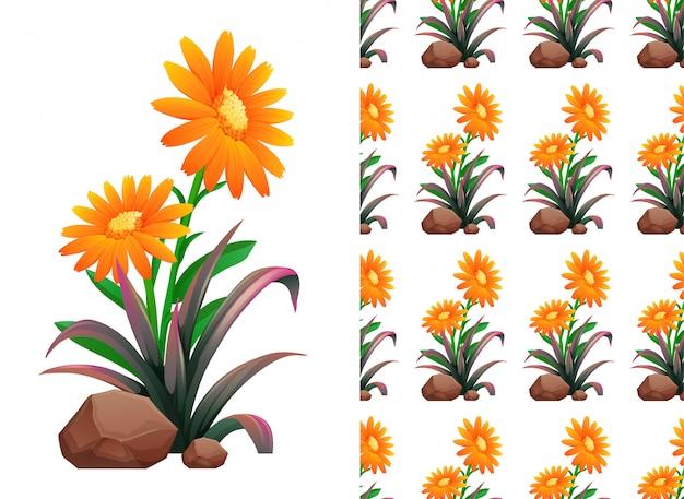 Orange gerbera flowers pattern