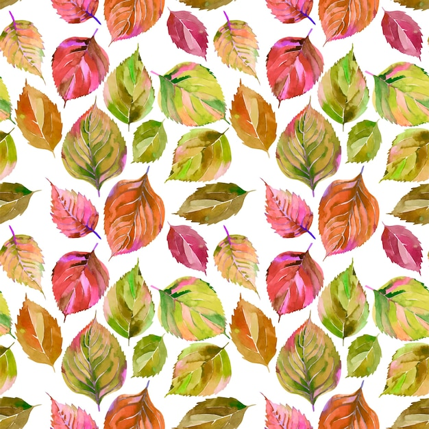Orange green yellow leaves pattern