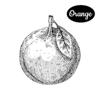 Оранжевый рисованной.