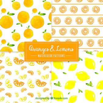 Orange and lemon patterns in watercolor style