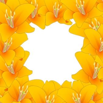 Оранжевая лилия