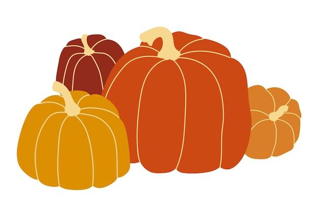 Orange pumpkin vector illustration. autumn halloween pumpkin, vegetable graphic icon or print, isolated on white background.