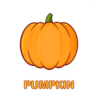 Orange pumpkin vegetables cartoon drawing simple design