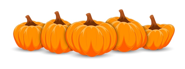 Orange pumpkins banner on white background