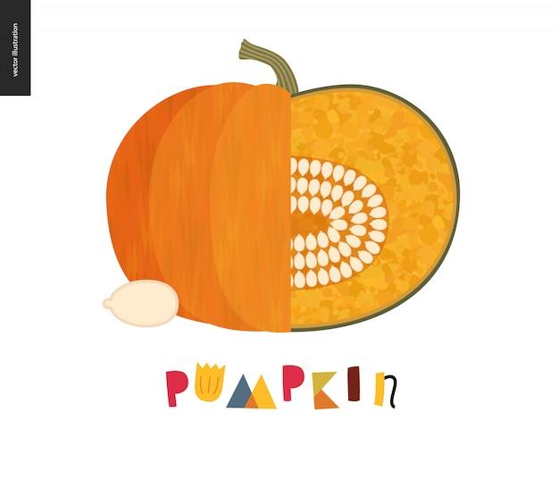Orange ripe pumpkin, uneven fresh pulp and dark orange