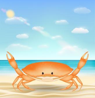 Orange sea crab on a sea sand beach