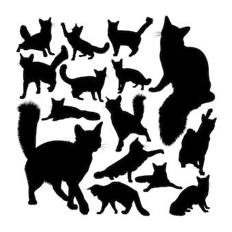 オレンジソマリ猫動物のシルエット