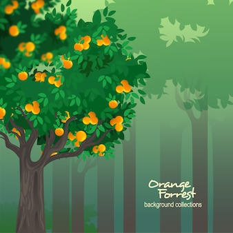 Orange tree forrest