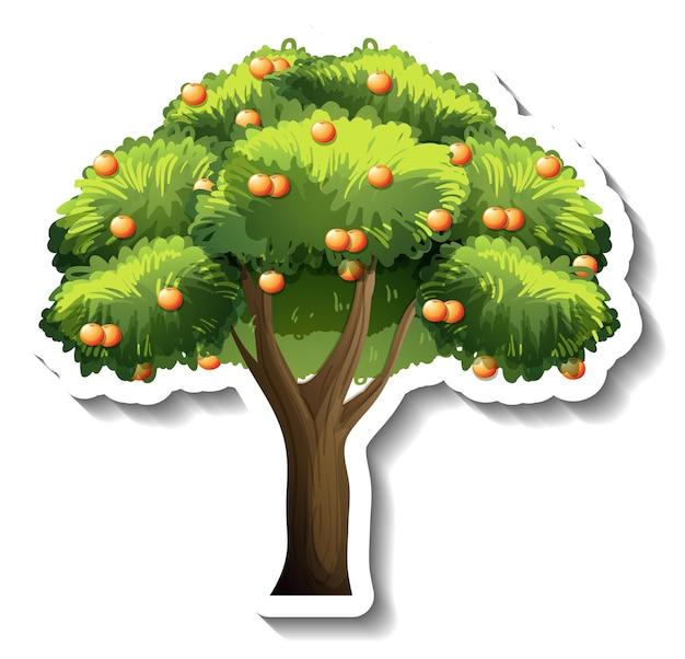 Стикер апельсинового дерева на белом фоне