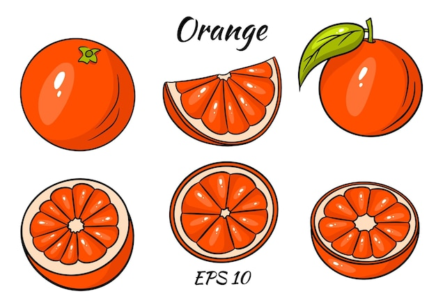 Оранжевый вектор. свежий тропический апельсин в мультяшном стиле