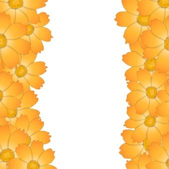 오렌지 옐로우 코스모스 꽃 테두리