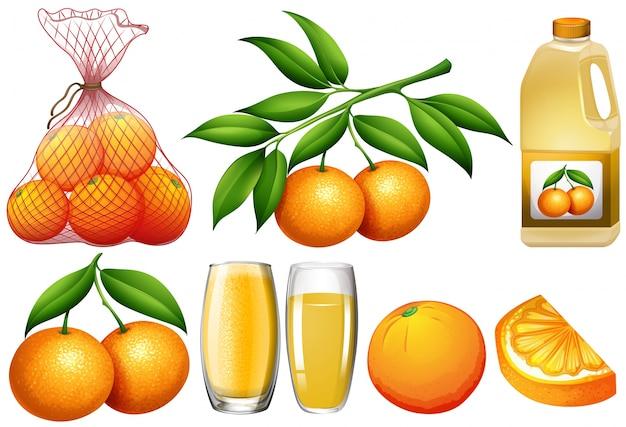 Illustrazione di arance e illustrazione di prodotti arancioni