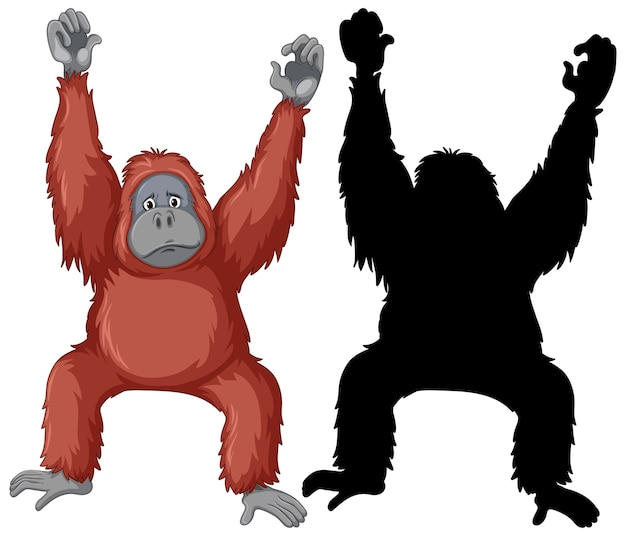 Orangutan characters and its silhouette on white background