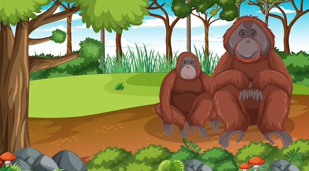 Orangutan in forest or rainforest scene with many trees