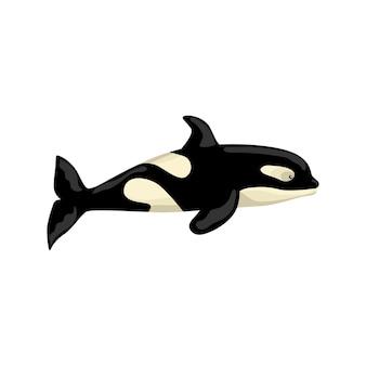 オルカは白い背景で隔離。子供のための海の漫画のキャラクター。海棲哺乳類のシンプルなプリント。あらゆる目的のために設計します。ベクトルイラスト。