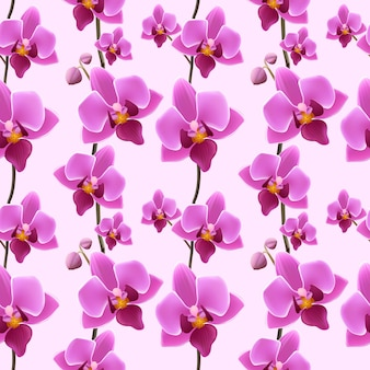 Orchid blossom seamless pattern