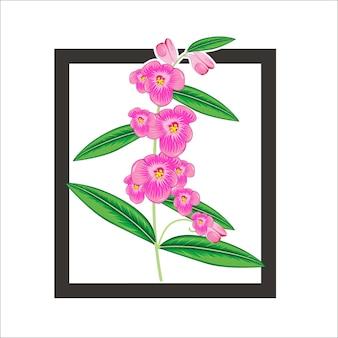 背景の蘭の花