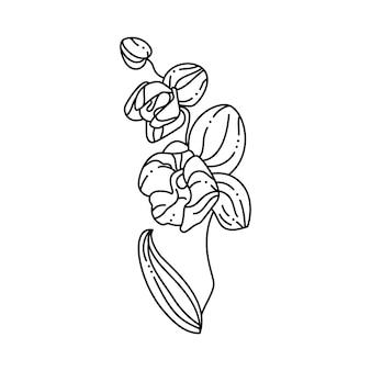 트렌디한 미니멀 라이너 스타일의 난초 꽃. 티셔츠, 웹 디자인, 미용실, 포스터에 인쇄하기 위한 벡터 꽃 그림, 로고 및 기타 만들기