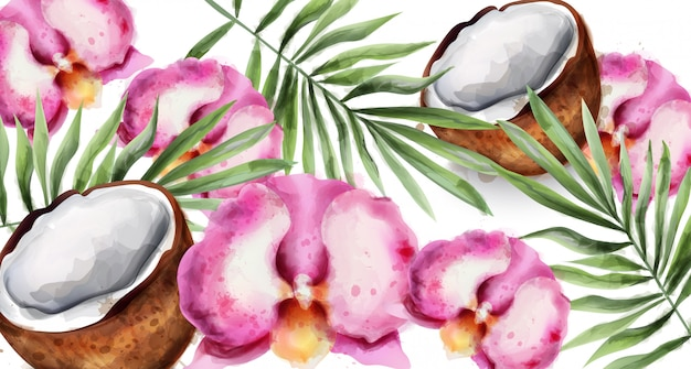 Orchid flowers and coconut watercolor