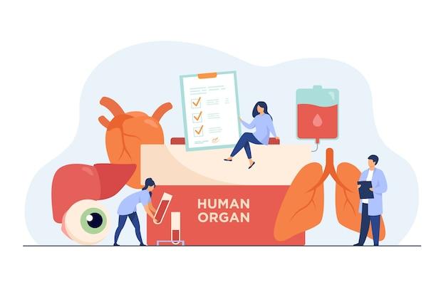 臓器提供のコンセプト。人間の臓器のテキスト、人間の肺、眼球、肝臓、心臓、血液が入った容器。