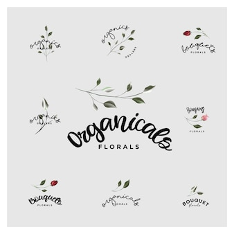 Organic botanical bouquet and floral logos