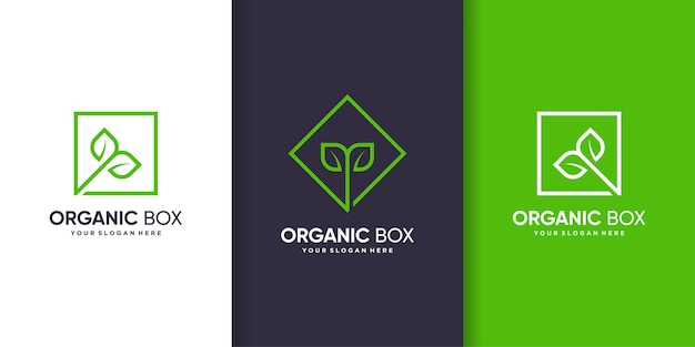 Organic box logo template with modern line art style premium vector