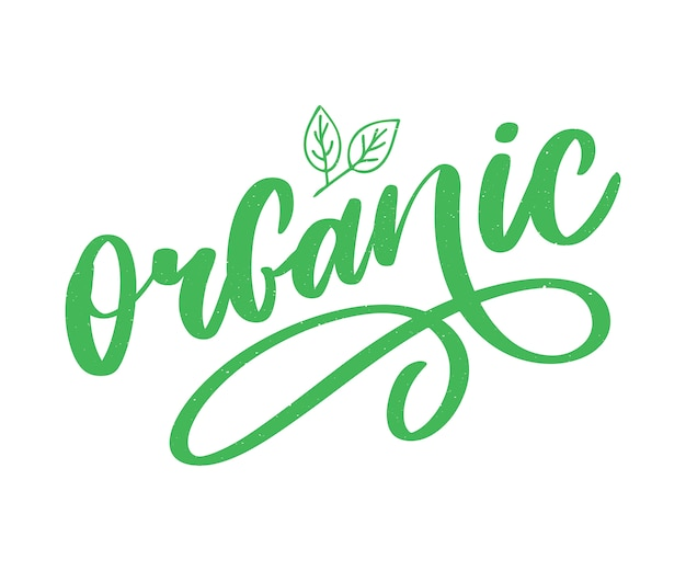 Organic brush lettering. hand drawn word organic with green leaves. label, logo template for organic products, healthy food markets.