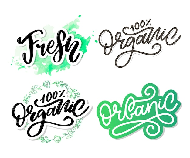 Organic brush lettering hand drawn word organic with green leaves label logo template for organic