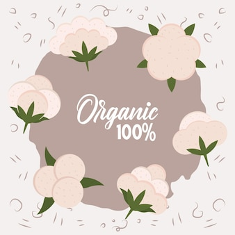 Organic cotton banner