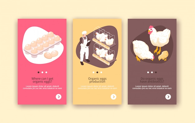 Organic eggs and chicken meat production 3 isometric vertical poultry farm colorful background banners isolated