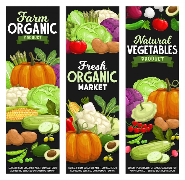 Organic farm food, vegetables and veggies market banner set