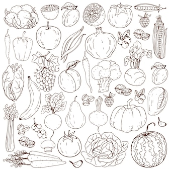 Organic farm  healthy lifestyle elements. healthy hand-drawing vegetables , fruits, berries, nuts, mushrooms