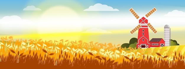 麦畑、赤い工場、納屋、朝日、雲と有機農場の風景